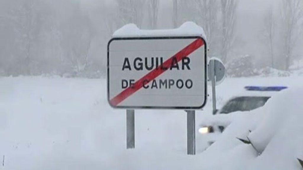Aguilar bajo la nieve