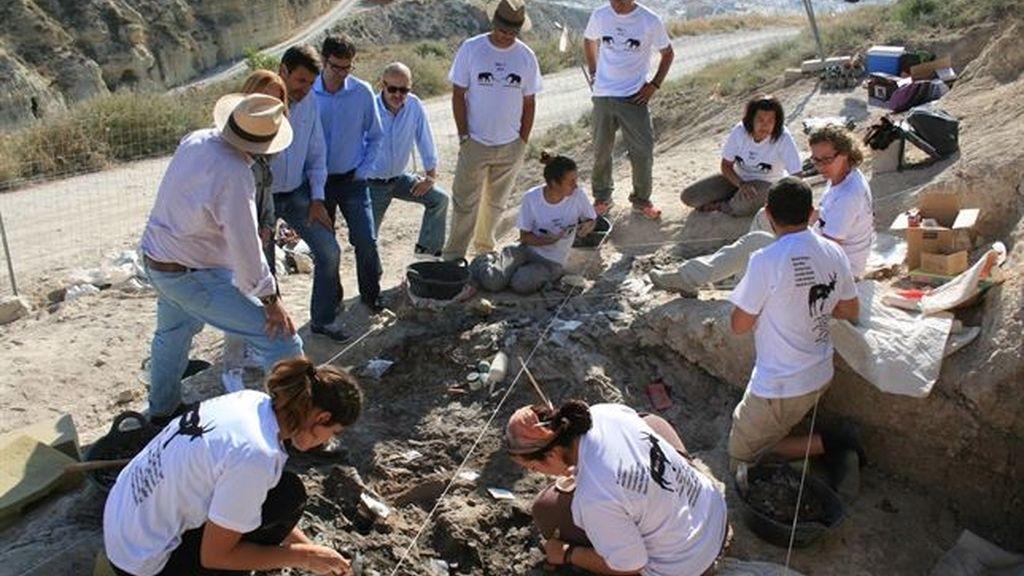 Fósiles de Baza muestran que en la zona vivieron animales hace cuatro millones de años