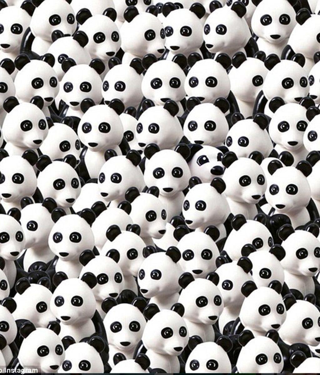 El perro Duplo de Lego entre pandas