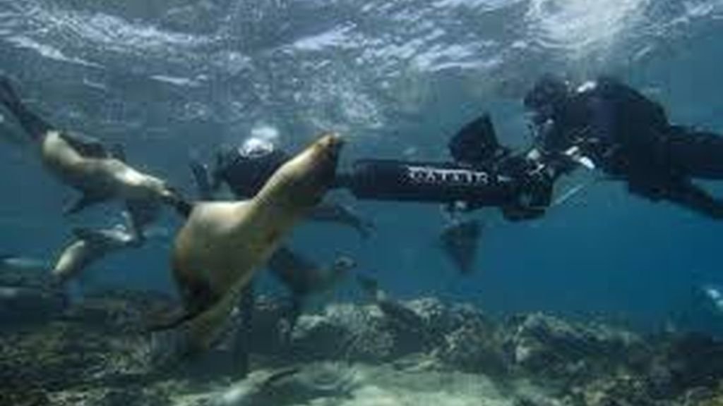 Google Street View Oceanos,experiencia, mapas,