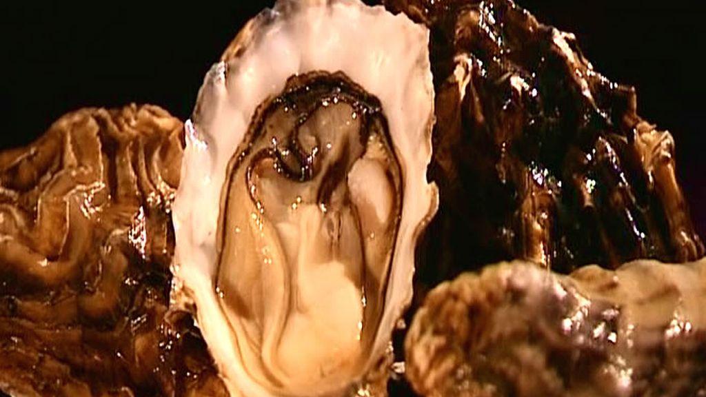 Las ostras se conocen también por su capacidad afrodisíaca