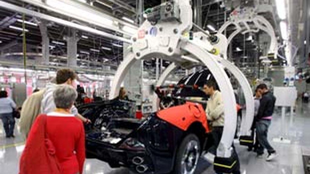 La producción se recortará en torno al 21% este año. Foto: EFE.