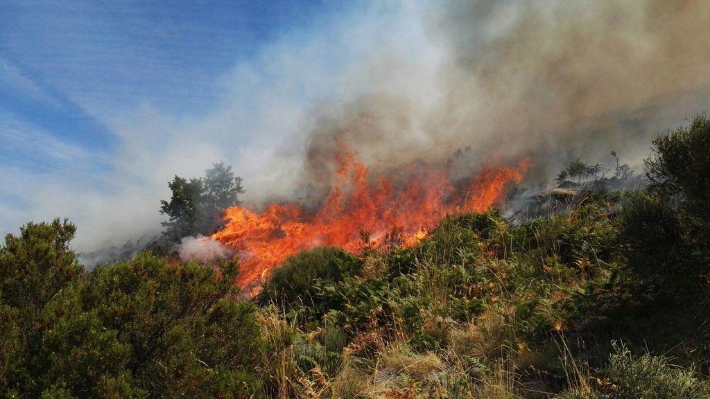 El incendio del Jerte sigue sin controlar y se ha decretado el nivel 2 de peligrosidad