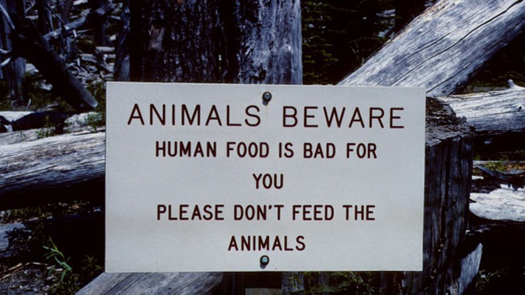 Advertencia para los animales