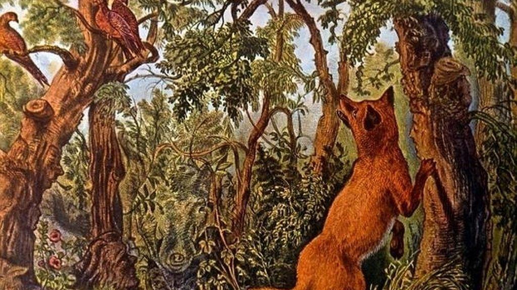 'The Puzzled Fox', destreza visual