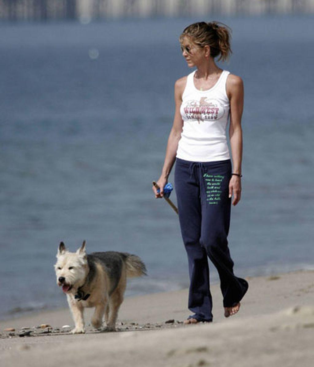Del perro depresivo de Jennifer Aniston al sonriente de Paris Hilton