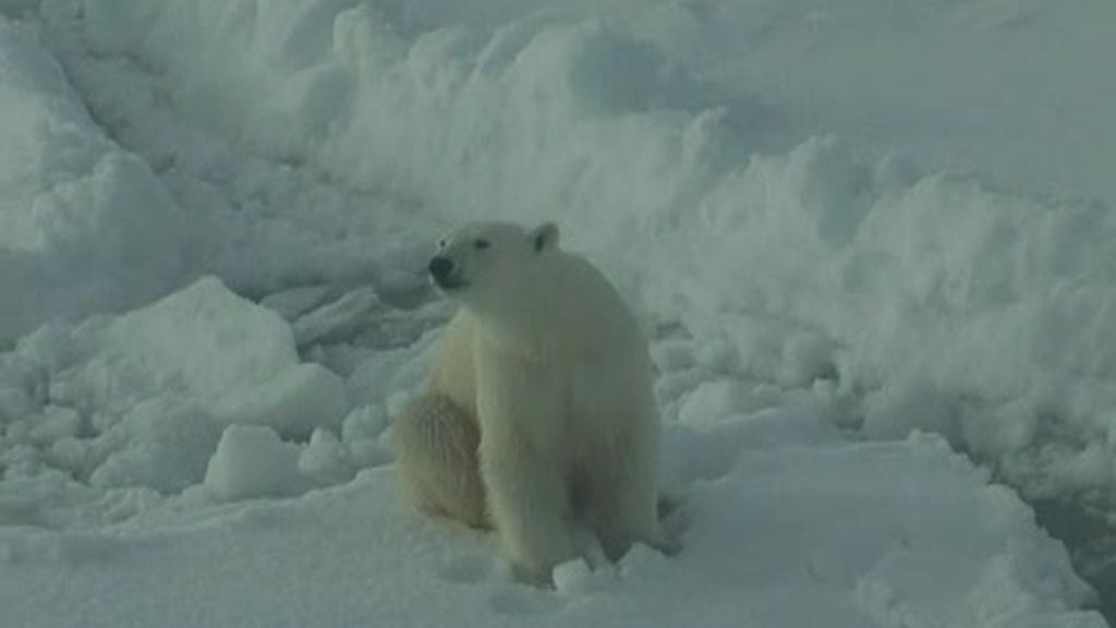 Rumbo al Ártico