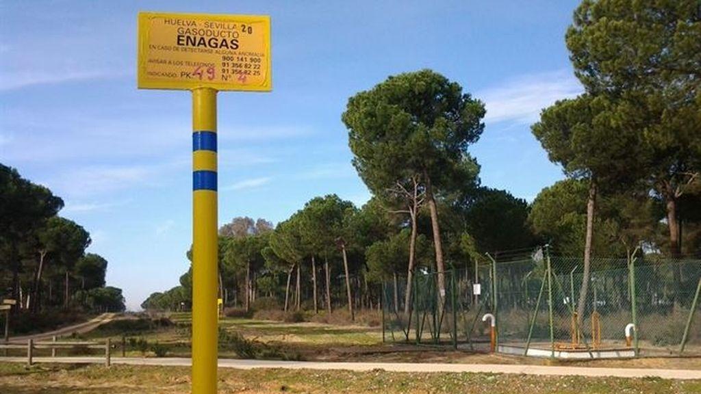 WWF entrega en la Junta más de 11.000 firmas recogidas contra el almacén de gas en Doñana