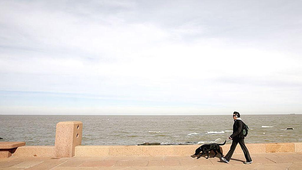 Un residente camina con su perro frente al paseo marítimo en un soleado día de verano en Montevideo