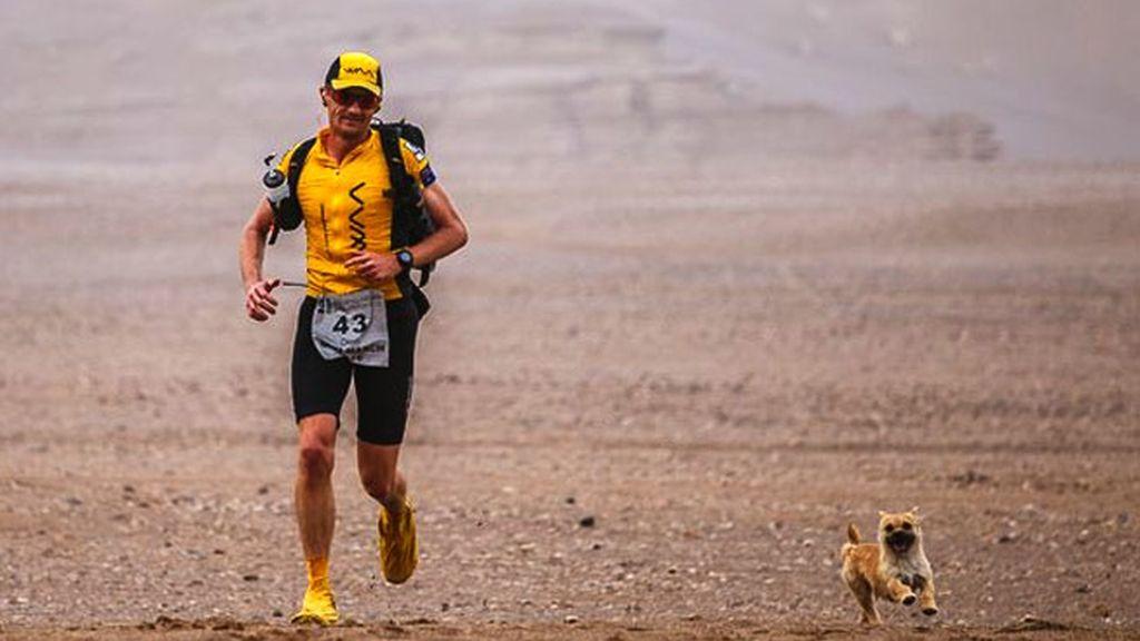 maratón Gobi, perra maratonista, Dion Leonard