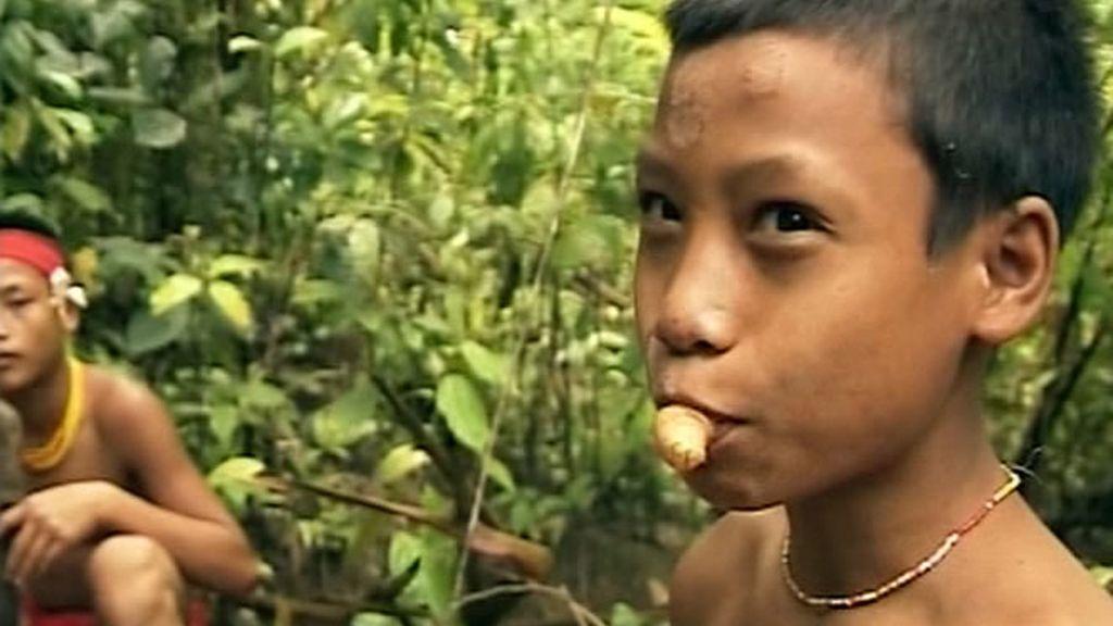 Los Recuero descubren que las larvas forman parte de la gastronomía local de los Mentawai