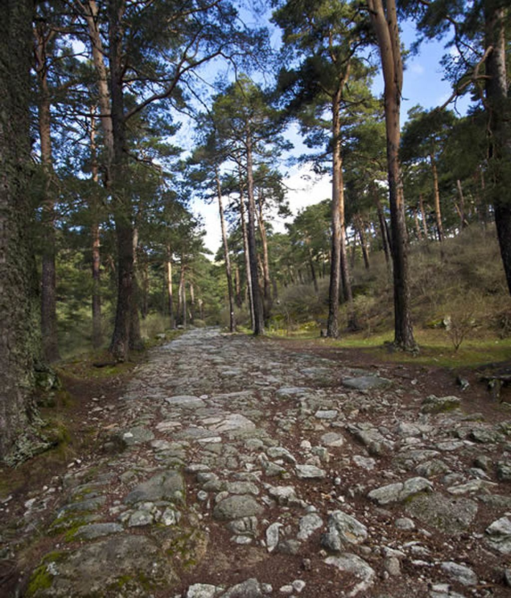 Nieves Álvarez quiere mostrarnos la Sierra madrileña