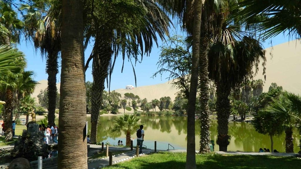 Un oasis en medio de Atacama