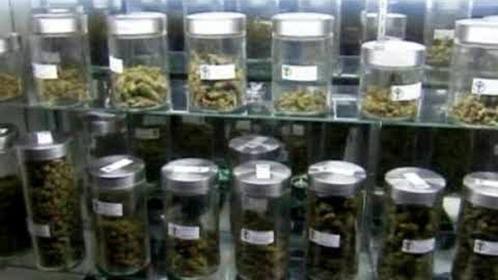 Marihuana legalizada