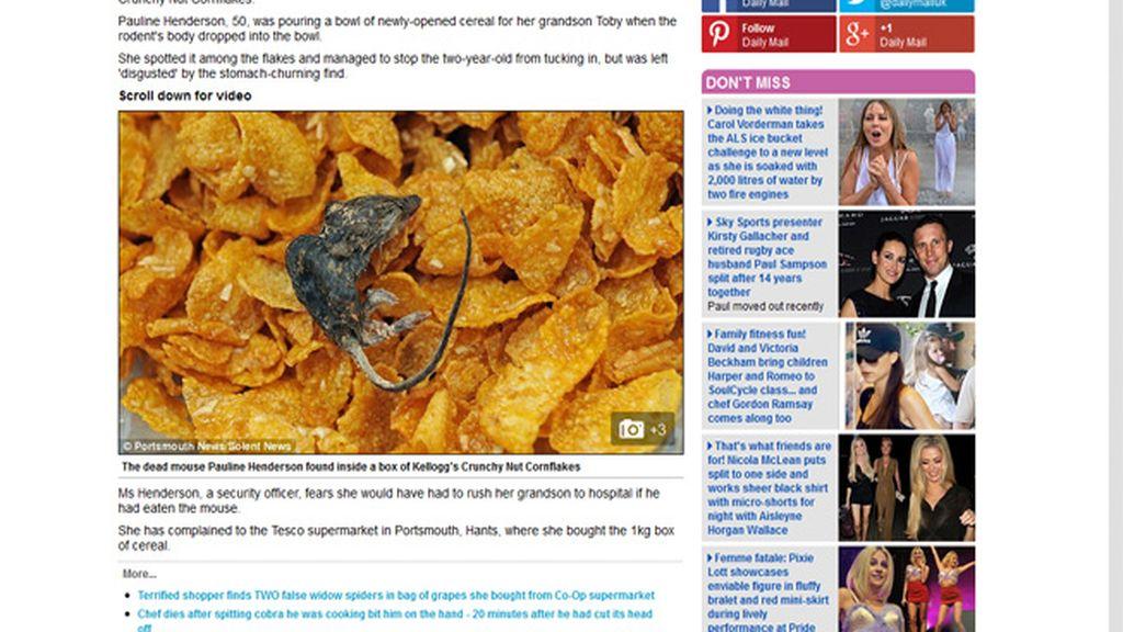 Una abuela inglesa descubre un ratón muerto en un paquete de cereales