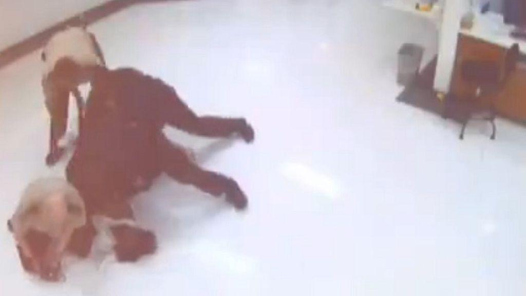 Un vídeo muestra la paliza de varios policías a un joven que terminó con su vida