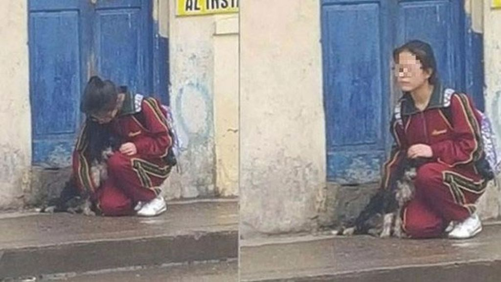El gesto de una joven peruana con un perrito se vuelve viral
