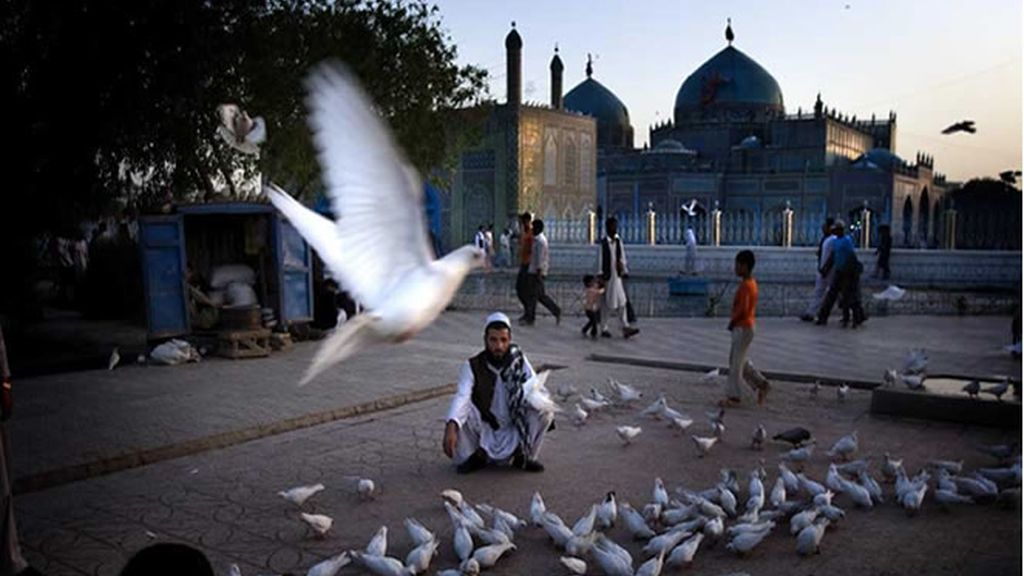 Posando con las palomas