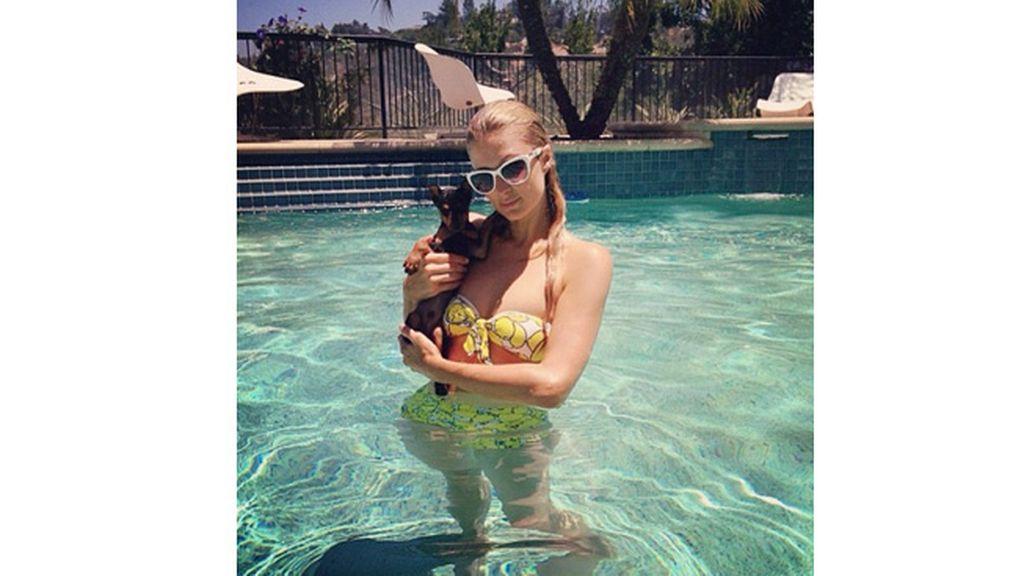 Paris Hilton enseña a su perrito a nadar en la piscina