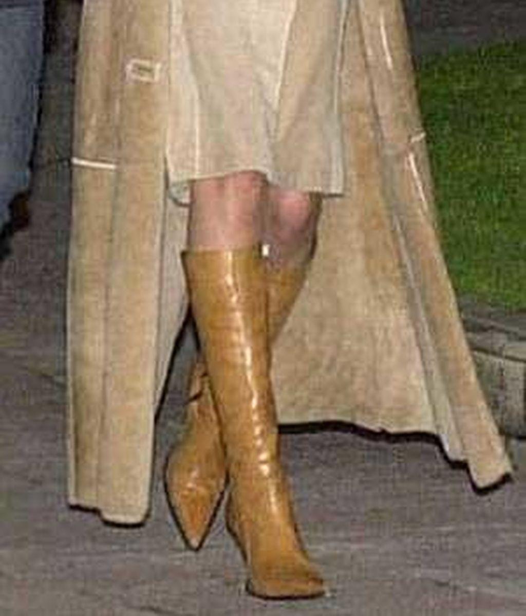 La Princesa con botas
