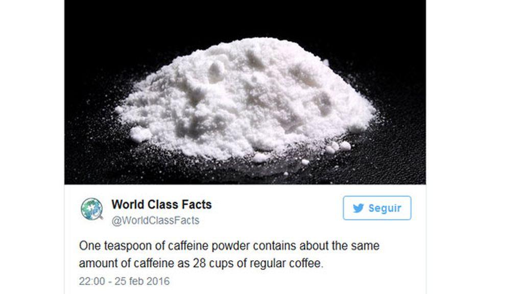 Cafeína en polvo