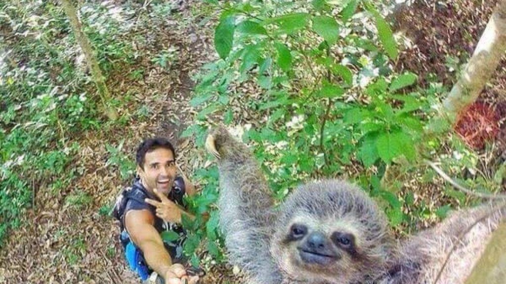 Selfi perezoso