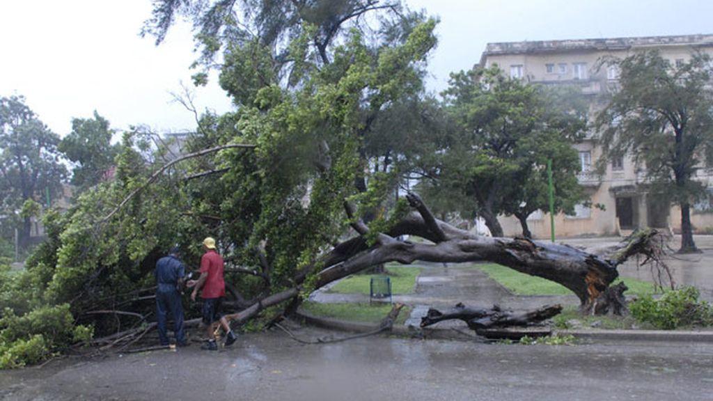 La destrucción de la tormenta Gustav