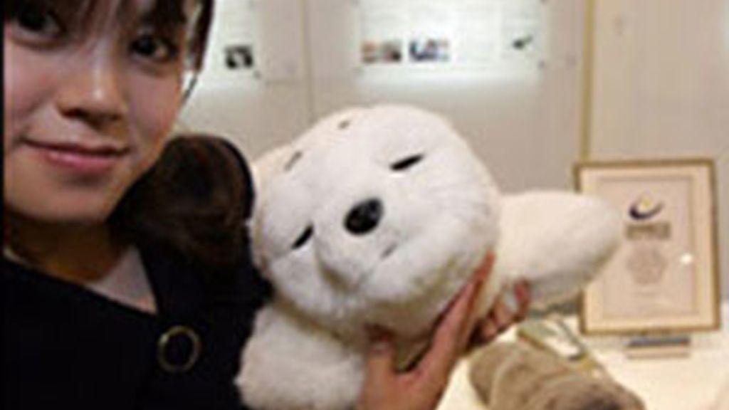 Así es Paro, la foca-robot terapéutica. Foto de Archivo