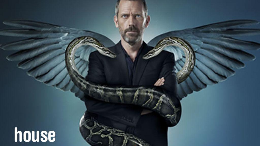 House: 6º temporada