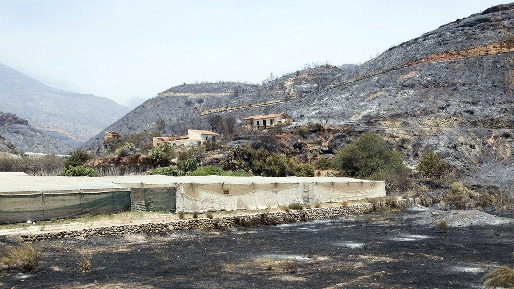 Logran estabilizar el incendio de Gualchos