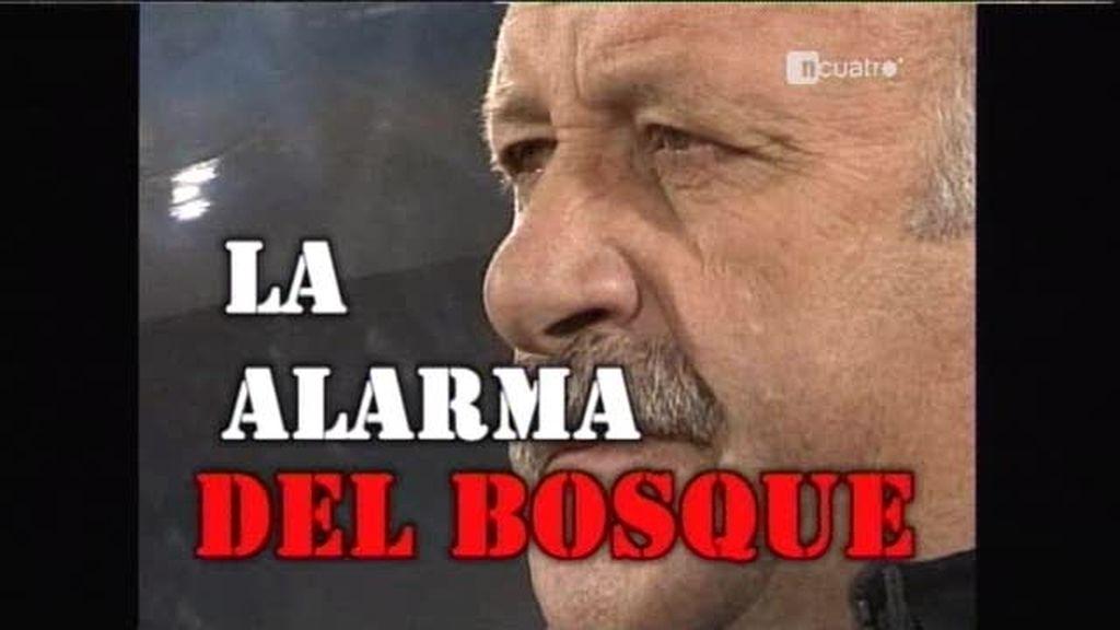 La alarma Del Bosque