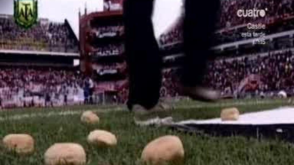 ¡ Cuidado en el patatal!