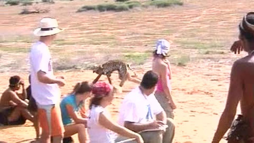 IMÁGENES INÉDITAS: Los bushman juegan a los animales
