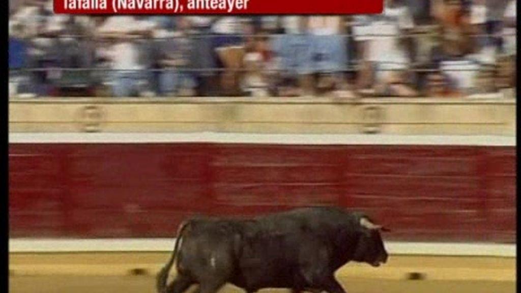 Polémica en Tafalla por el desangramiento de un toro
