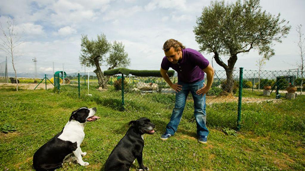 Borja Capponi y sus perros