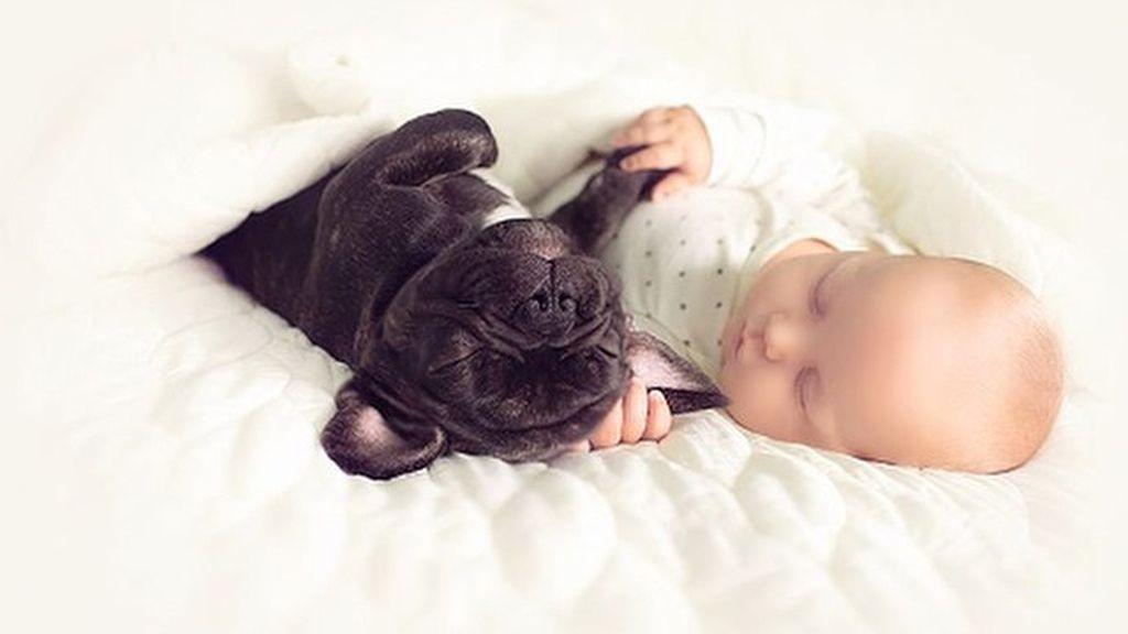 Dilan y Farley, su perro, comparten algo más que su cumpleaños