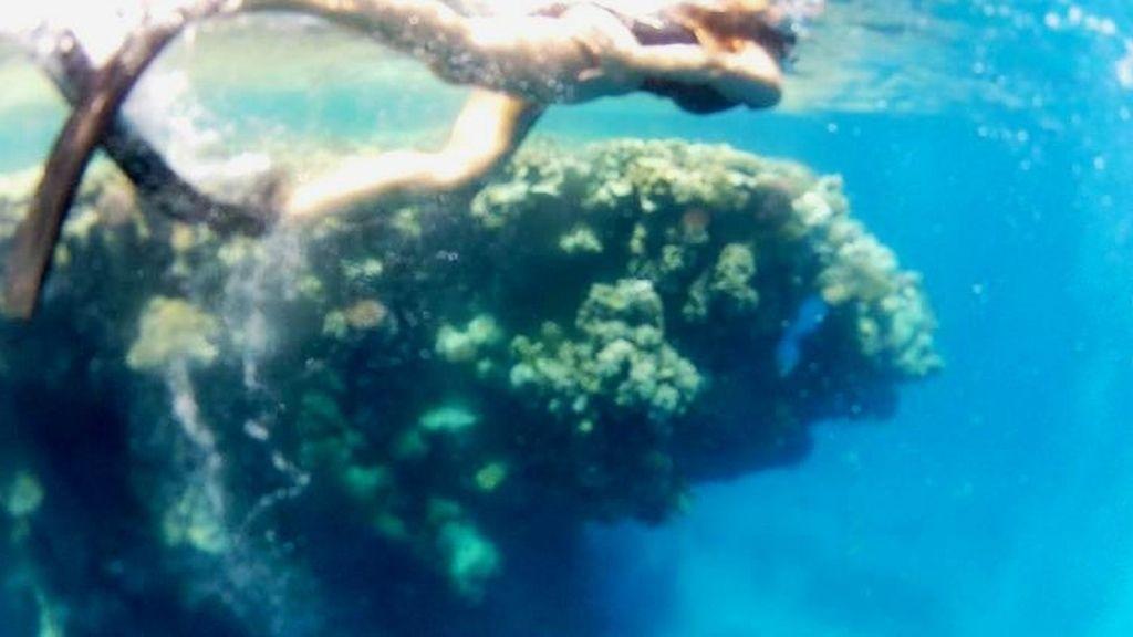 Volando entre arrecifes Foto 3