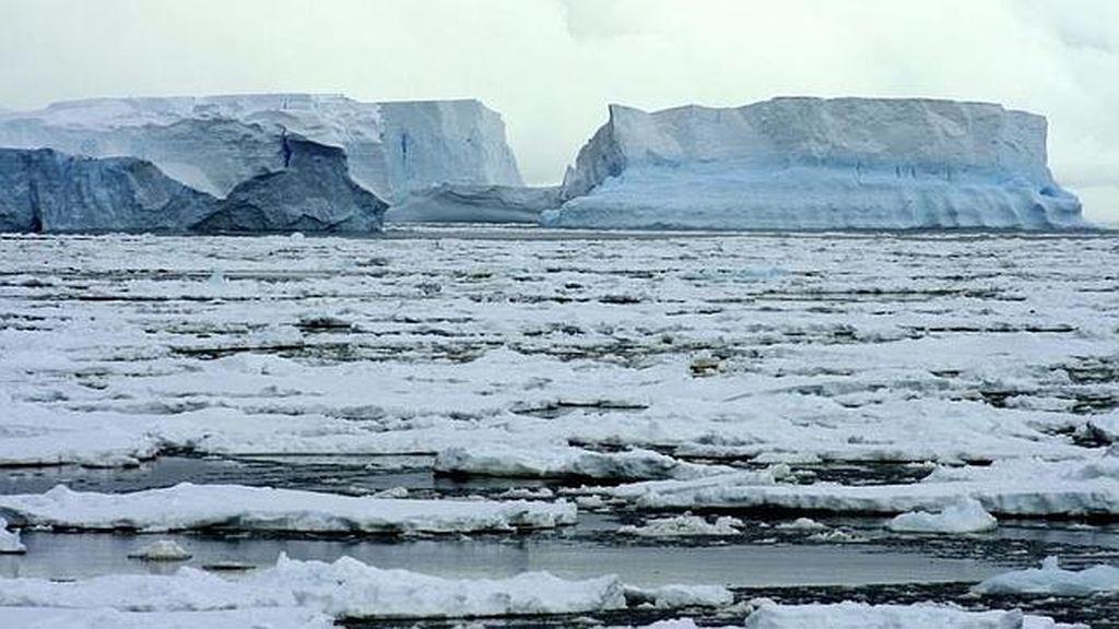 Una extensión como Suecia será verde en Groenlandia para 2100
