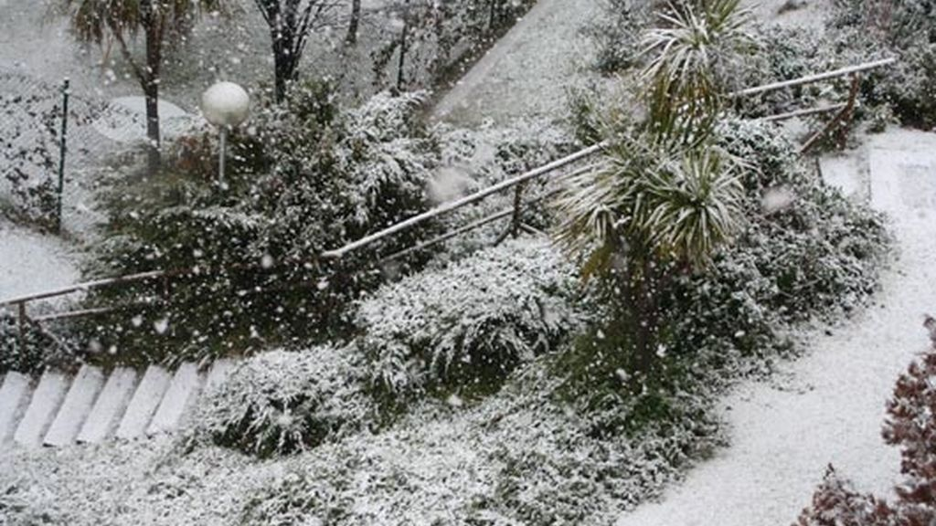 manto blanco