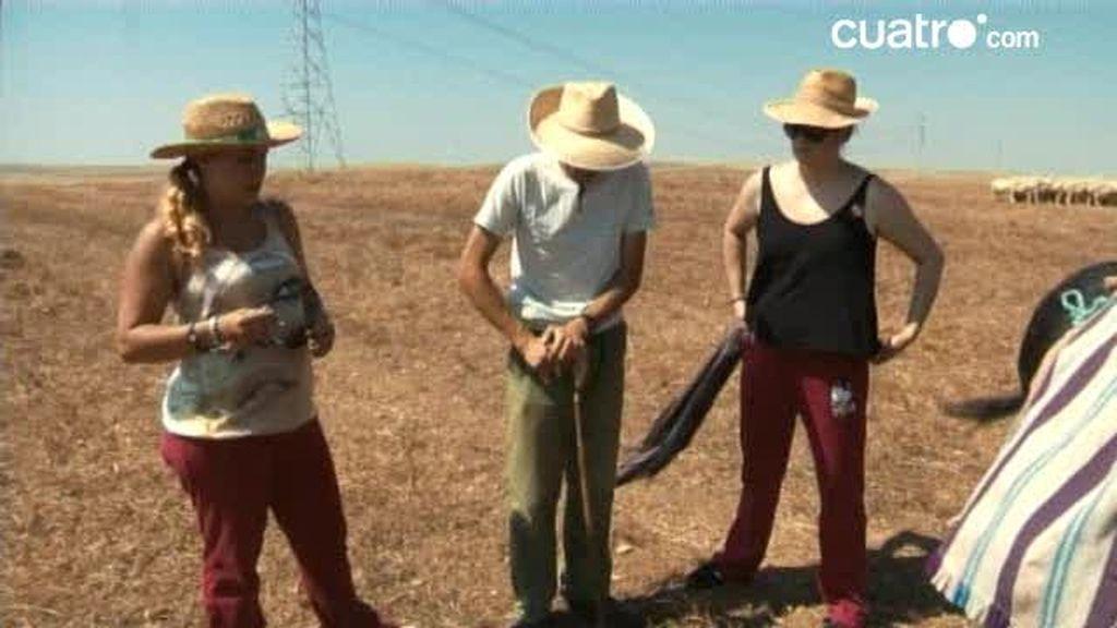 Pedro enseña cómo hacer aguas mayores en el campo...