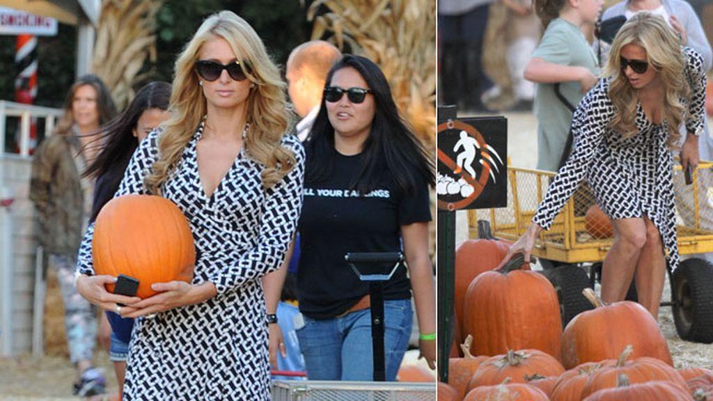 Paris Hilton fue a elegir su 'pumpkin' con mucho estilo