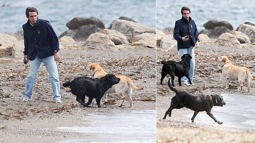 Aznar y sus perros en la playa de Marbella