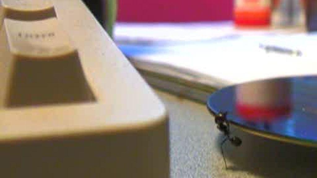 Promo El hormiguero: Se acercan las hormigas