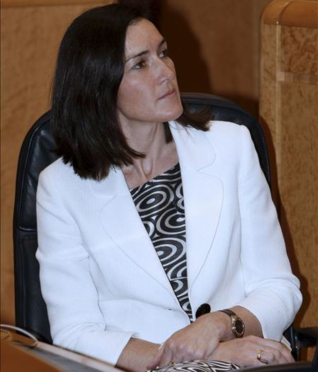 La ministra de Cultura, Ángeles González-Sinde, durante la sesión de control al Gobierno que se ha celebrado hoy en el Senado. EFE
