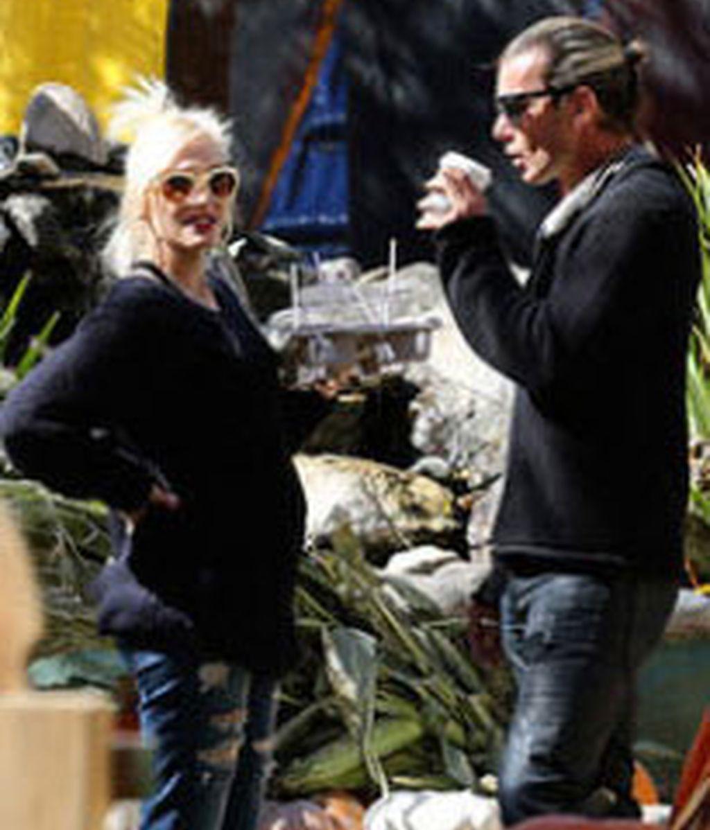 Gwen Stefani , comprando calabazas