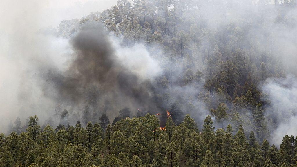 Incendio La Gomera, Tenerife y La Palma