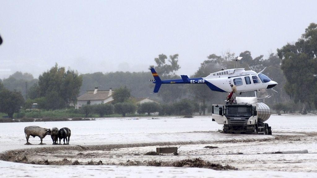 Rescate en Lorca por las inundaciones. Foto: EFE