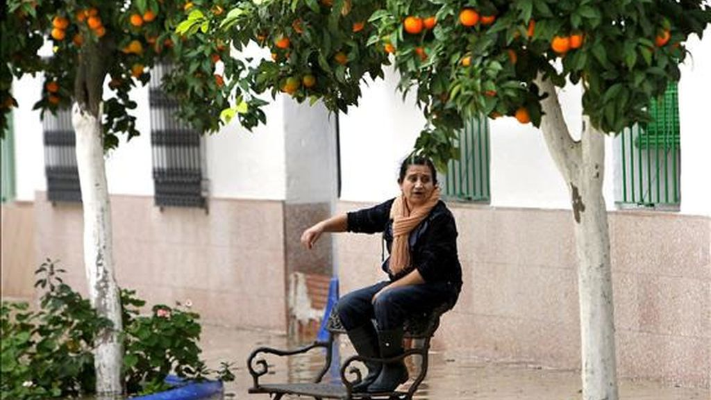 Desalojos en Nora del Río (Sevilla)