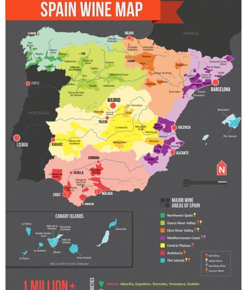 El mapa del vino en España