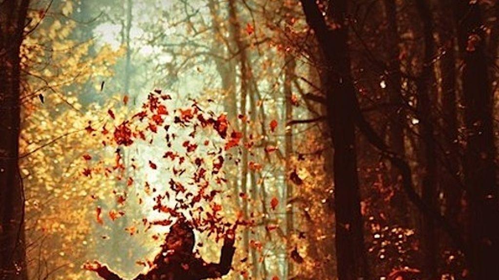 otoño,música de otoño,melancolía otoñal